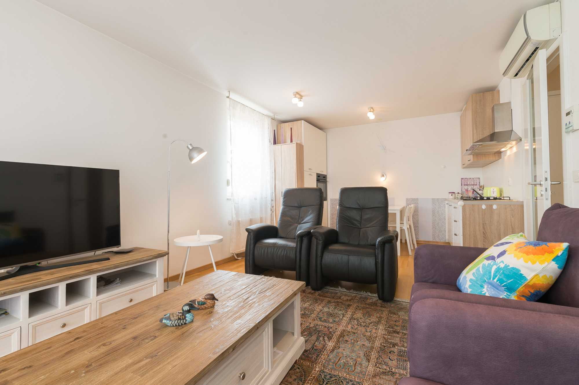 The apartment features a TV and comfortable seating around a Persian rug.
