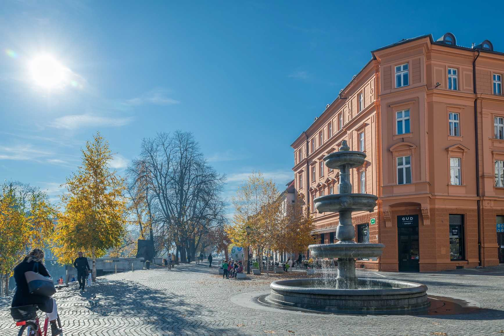 The apartment is located in the famous Novi Trg with a fountain.